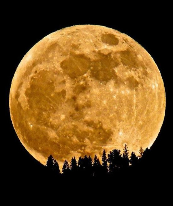 600-supermoon14nov-real-simple